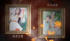 结婚纪念电子相册婚礼开场视频唯美婚纱照视频婚庆照片短片头