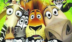 动物明星生日动画开场视频10岁12岁搞笑生日视频预告片制作
